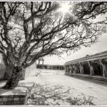 Monochrome of Lepakshi Temple