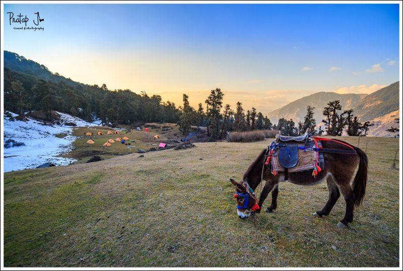 Rohini Bugyal Campsite