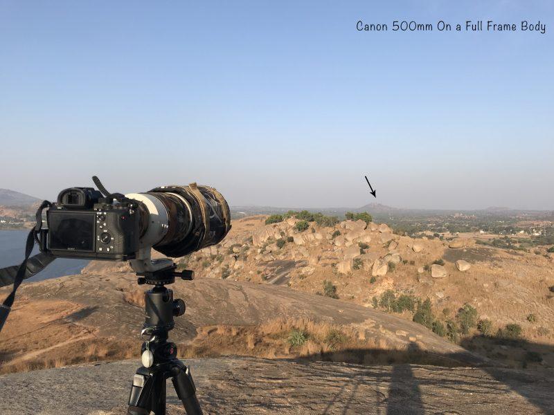 Canon 500mm on a full frame body