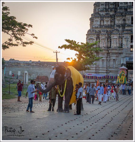 Temple Elephant in front of Virupaksha