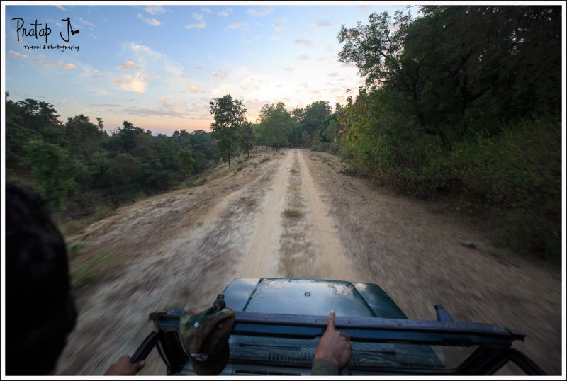 Open Top Jeep Safari at Satpura