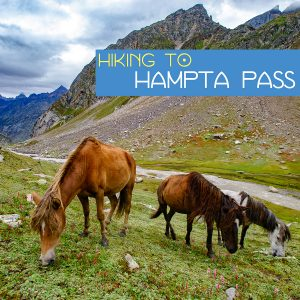 Trekking to Hampta Pass and Camping at Chandratal Lake