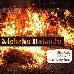 Shooting the Kichchu Haisodu Event During Makar Sankranti