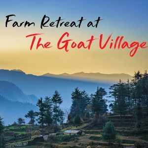 A Quiet Farm Retreat in the Himalayas – The Goat Village